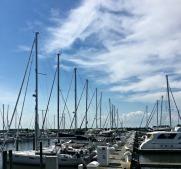 Blog Lakeshore 4